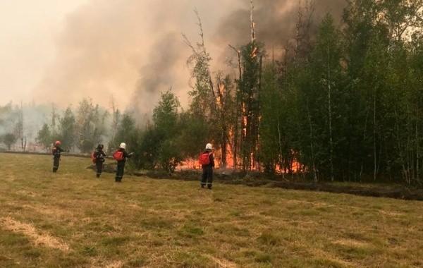 За сутки на горящие леса Якутии слито свыше 500 тонн воды