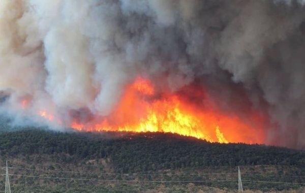 Режим ЧС введен в Италии из-за масштабных лесных пожаров